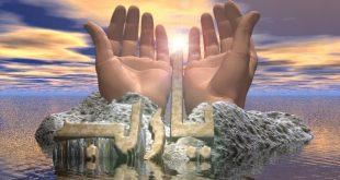 مجلس الاوليات العامر بذكر الله دائم