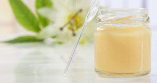 كل فوائد غذاء ملكات النحل الغذاء الملكي Royal Jelly للصحة و لكل شئ